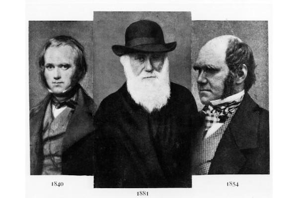 """Darwin ficou conhecido por sua obra """"A origem das espécies por meio da seleção natural""""."""