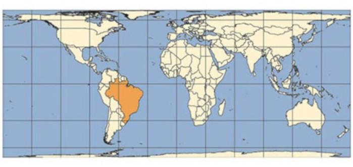 A projeção de Peters privilegia os países subdesenvolvidos e em desenvolvimento.
