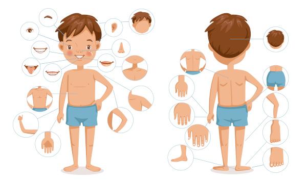 Conhecer as parts of the body em inglês é fundamental para uma comunicação efetiva.