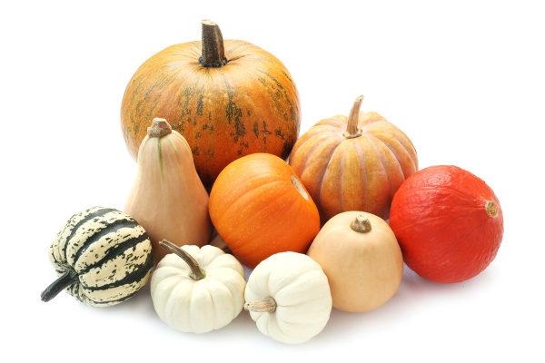 Apesar de estar incluída nas hortaliças, a abóbora é um fruto rasteiro.