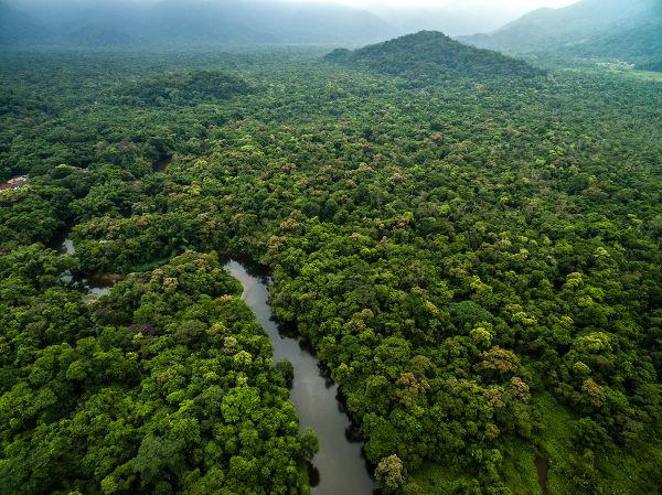 A densidade da floresta somada às altas temperaturas e aos grandes rios tornam a região Norte a mais chuvosa do país.