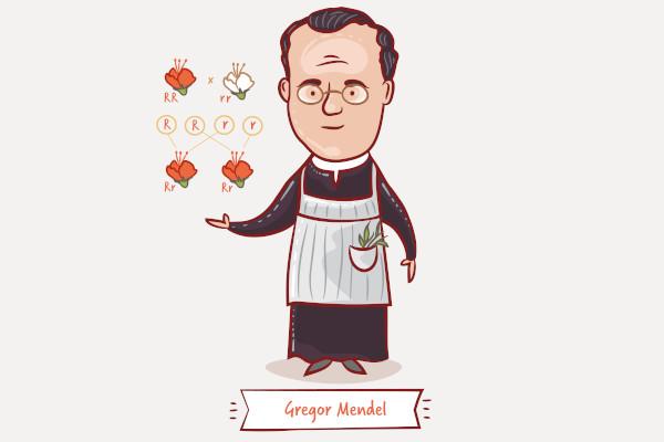 Gregor Mendel fez importantes contribuições para a ciência, porém seus trabalhos não foram imediatamente reconhecidos.