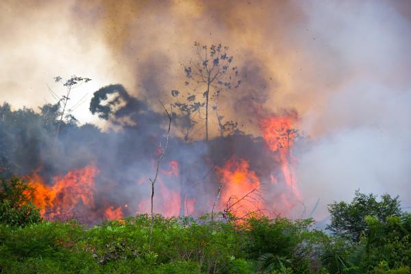 Queimada na Amazônia brasileira para área de pastagem.