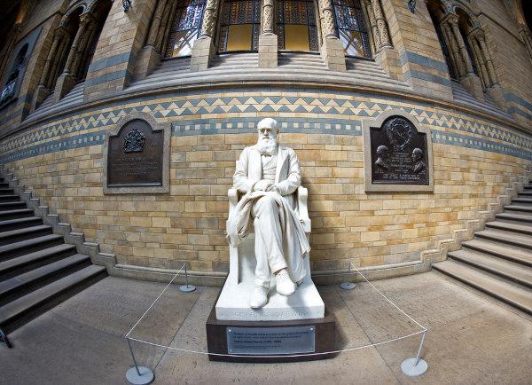Darwin propôs a ideia de seleção natural como um dos mecanismos que levam à modificação dos organismos.