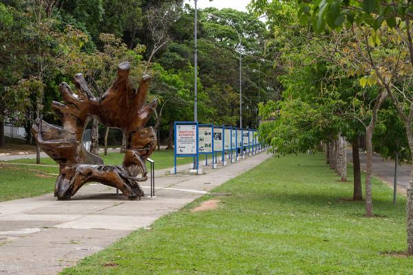 O parque é muito frequentado para atividades de lazer em família e com amigos. [4]