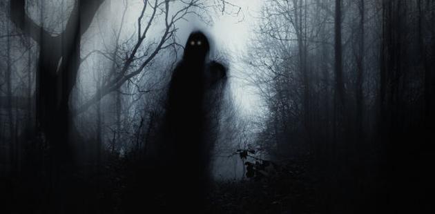 Fantasma numa floresta negra