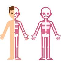 Desenho de garoto esqueleto