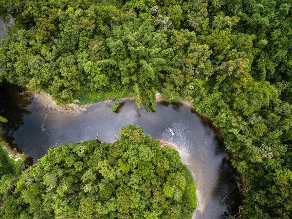 A Floresta Amazônica, marcada por rios caudalosos e vegetação equatorial, está presente em todo o território acriano.