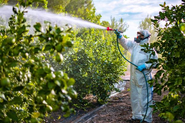 Haletos orgânicos são comumente empregados em pesticidas.