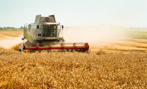 A modernização do campo é uma das causas do êxodo rural.