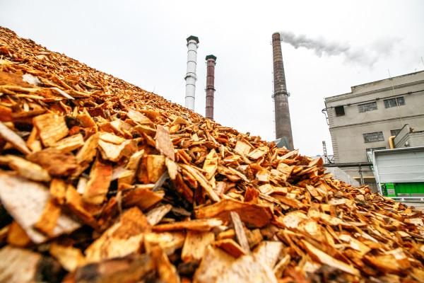 Resíduos de madeira em fábrica que produz energia de biomassa