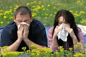 Algumas pessoas têm alergia ao pólen das flores