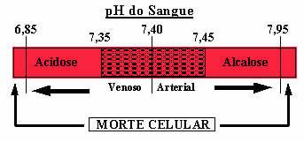 Se o pH do sangue aumentar muito é um caso de alcalose; já se diminuir, será uma acidose
