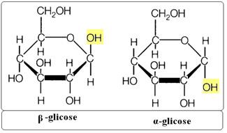 Fórmula cíclica da glicose