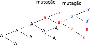 No esquema acima podemos ver claramente a origem dos alelos múltiplos