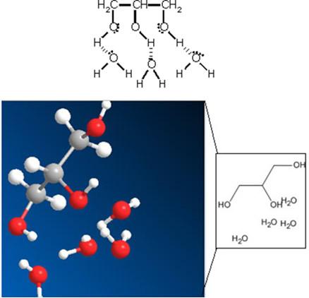 Ligações de hidrogênio entre moléculas de água e de glicerina dos hidratantes