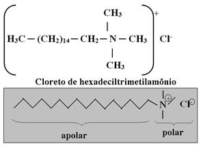 Surfactante de sal quaternário de amônio: cloreto de hexadeciltrimetilamônio