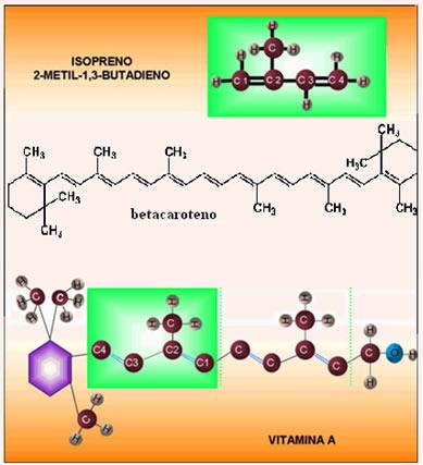 Fórmulas estruturais do betacaroteno e da vitamina A