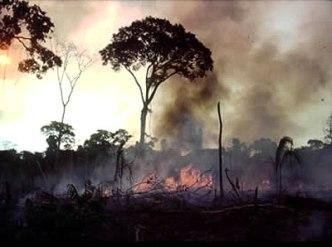 http://www.brasilescola.com/upload/e/desmatamento%20e%20poluicao%20do%20ar.jpg