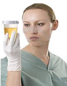 canela de velho comprimido,remedio caseiro canela de velho,remedio canela de velho,pra q serve canela de velho,canela de velho remédio,canela de velho onde encontrar,Miconia Albicans,analgésicas,anti-inflamatórias,antioxidantes,antimutagênicas,antimicrobianas,antitumorais,hepatoprotetoras ,tônica digestiva ,benefios para a saúde ´,purificação do sangue,neutralização dos radicais livres ,redução da dor ,inflamação das articulações,artrose ,artrite reumatoide