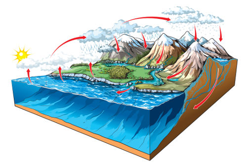O ciclo da água é um ciclo biogeoquímico bastante abordado no Enem