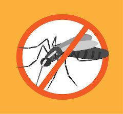 Ilustração de símbolo de proibido sob o mosquito da dengue