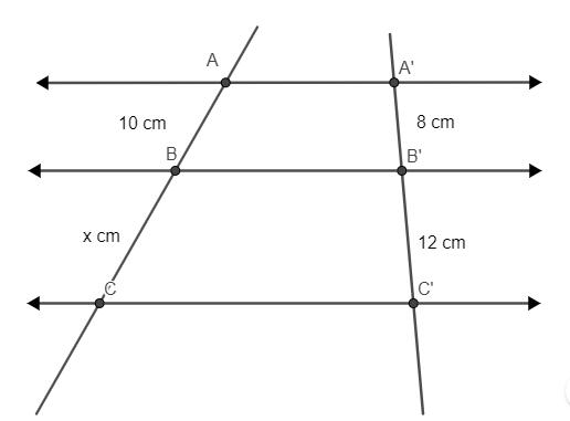 Ilustração de retas paralelas cortadas por duas transversais para determinar medida de segmento em exercício