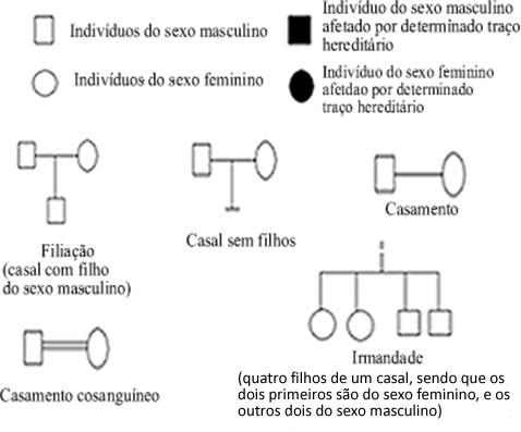 Símbolos utilizados na construção de um heredograma