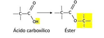 Formação de ésteres