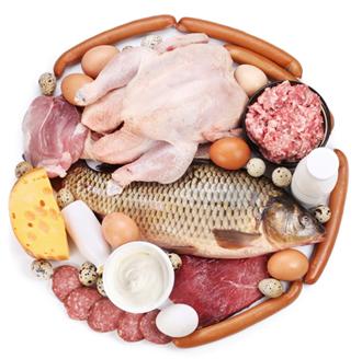 Ovos, carnes, peixes e laticinios são ricas fontes de proteínas