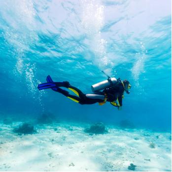A oxigenação do sangue pode se tornar crítica no caso de mergulhadores
