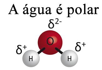 A molécula de água é polar
