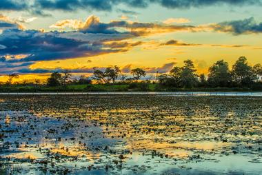 Planície inundável do pantanal brasileiro