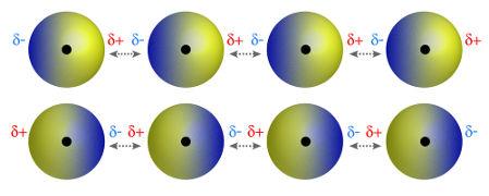 Moléculas que possuem polo positivo e negativo atraindo-se