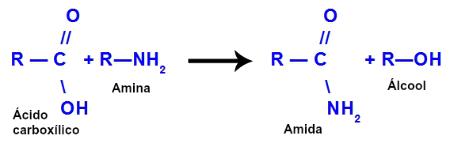 Equação de formação de uma amida a partir de uma amina