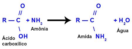 Equação de formação de uma amida a partir da amônia