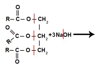 Quebra de ligações nos reagentes de uma reação de saponificação
