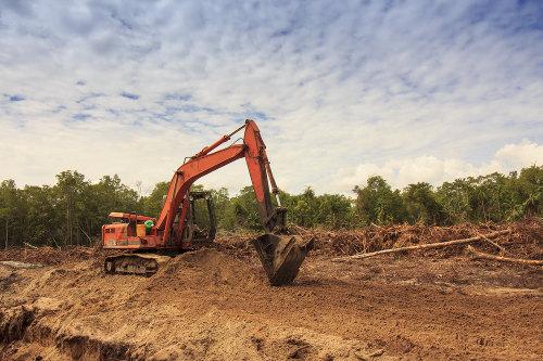 As derrubadas e queimadas expõem o solo diretamente ao trabalho da erosão pluvial