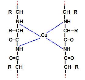 Representação da unidade estrutural de um complexo de biureto