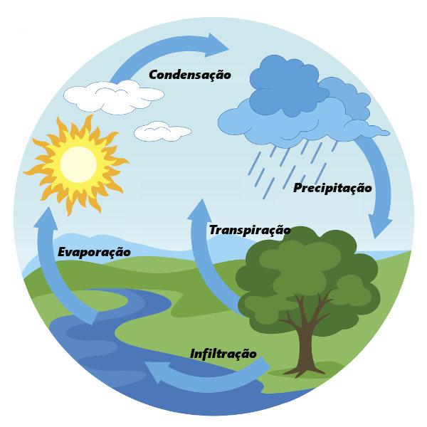 Observe acima um esquema do ciclo da água.