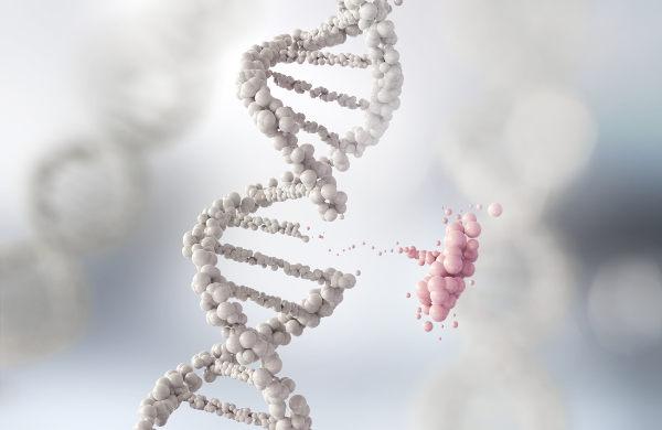 A Genética é uma das disciplinas estudadas nos cursos de Ciências Biológicas.