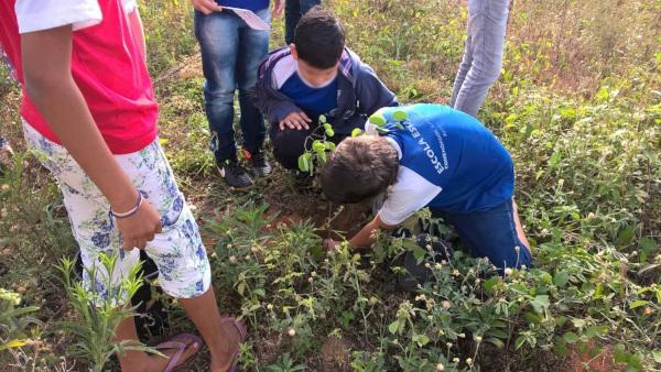 Alunos da Escola Comendador José Pedro Dias plantando mudas de árvores
