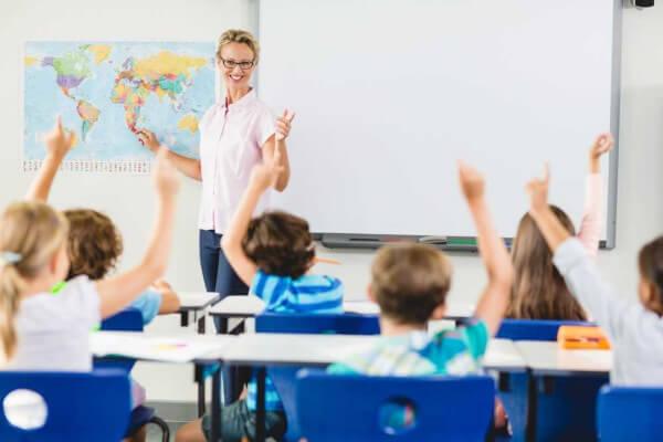 Orientador educacional