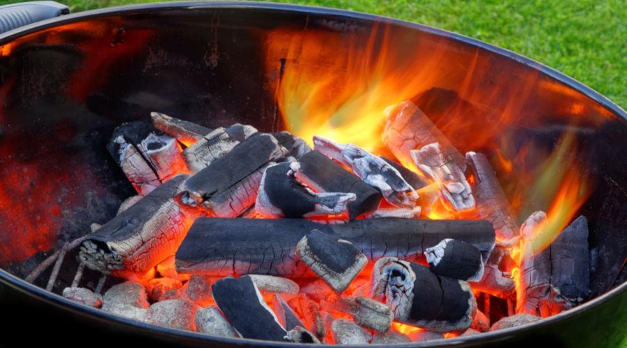 O carvão vegetal é obtido a partir da queima ou carbonização de madeira.