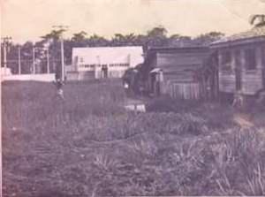 Imagem 08 - Foto da Rua Justo Chermont na década de 1970. Percebe-se que a rua estava coberta pelo o mato, imagem pertencente ao arquivo da Biblioteca Eustórgio Miranda.