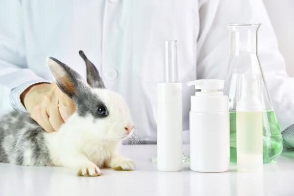 Os veganos, de maneira geral, não utilizam produtos testados em animais.