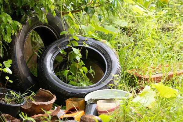O lixo descartado de maneira inadequada pode ajudar na proliferação do mosquito da dengue.