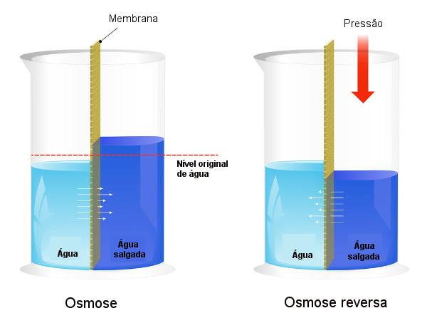 Na osmose reversa, o solvente passa do meio mais concentrado para o menos concentrado.