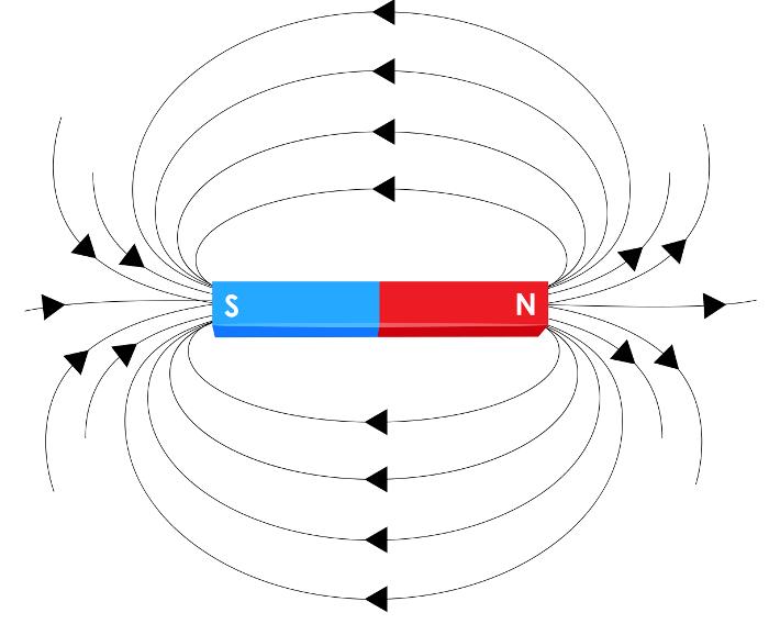 As linhas de indução do campo magnético saem do polo norte e entram no polo sul.